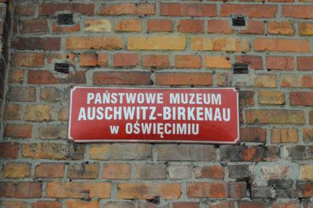 Polonia18 PSS 35